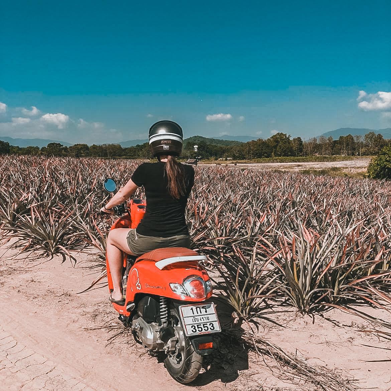 road trip scooter Mae hong son